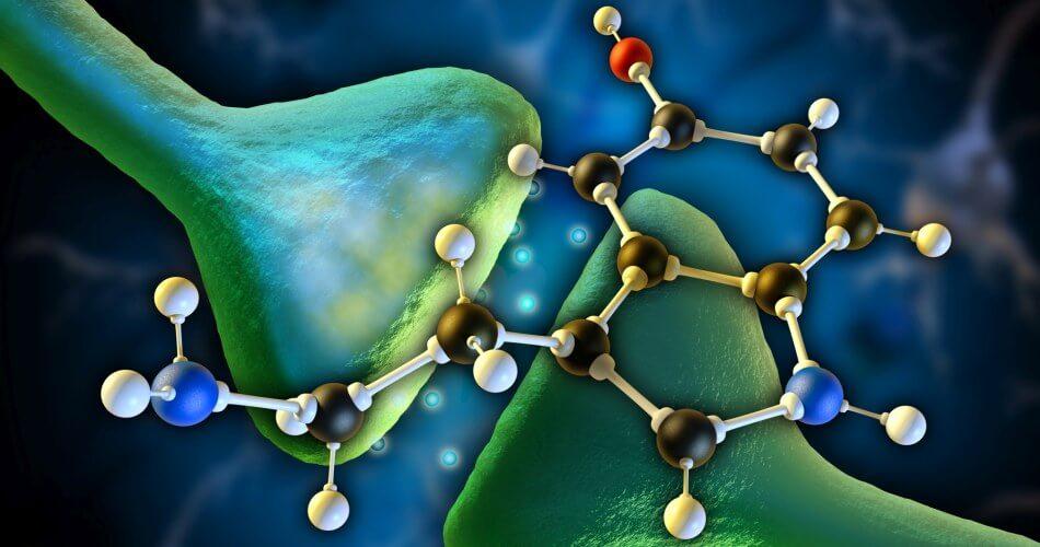 zespół serotoninowy